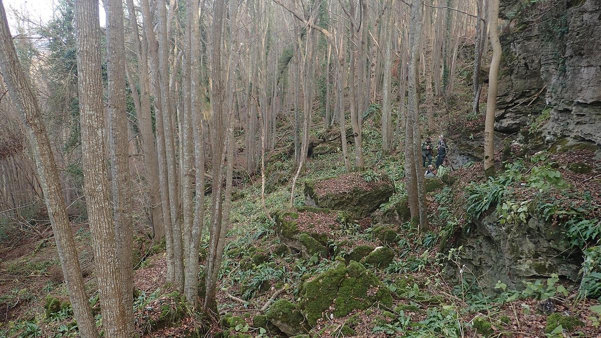 datant nouvelle forêt espace personnel datant