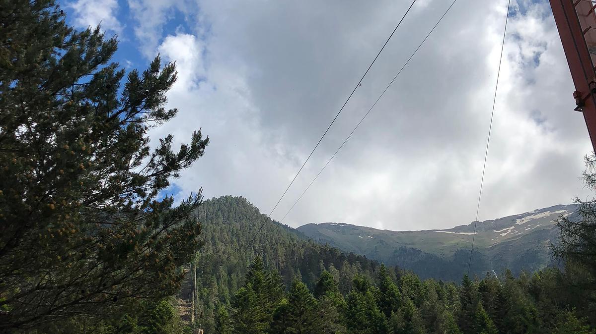 Vue des grumes suspendues au câble