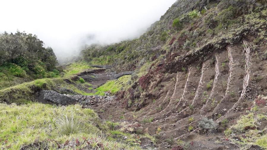 ONF - Protection - Risques naturels - lutte contre l'érosion
