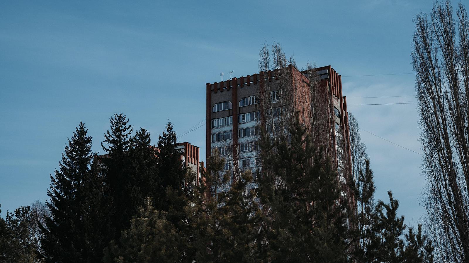 Forêt urbaine : l'arbre en ville contre le réchauffement climatique