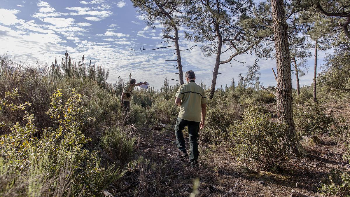 Réserve naturelle nationale des dunes et marais d'Hourtin
