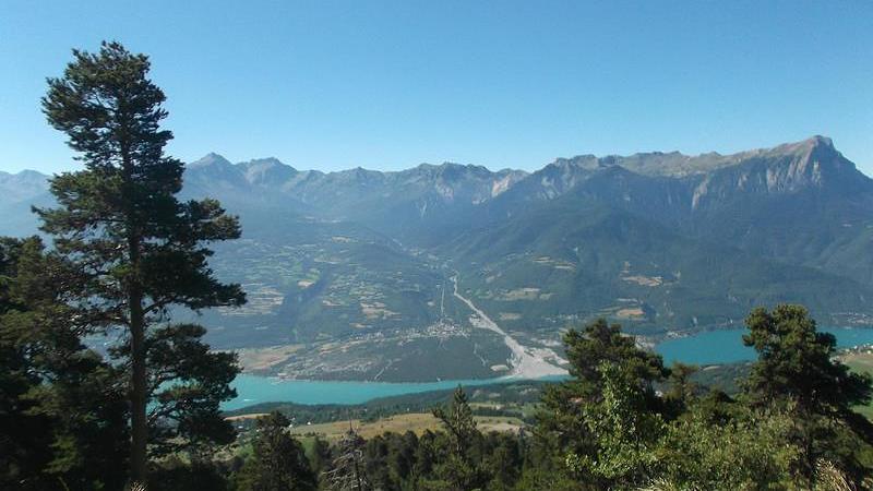 Forêt domaniale de Boscodon (Hautes-Alpes)