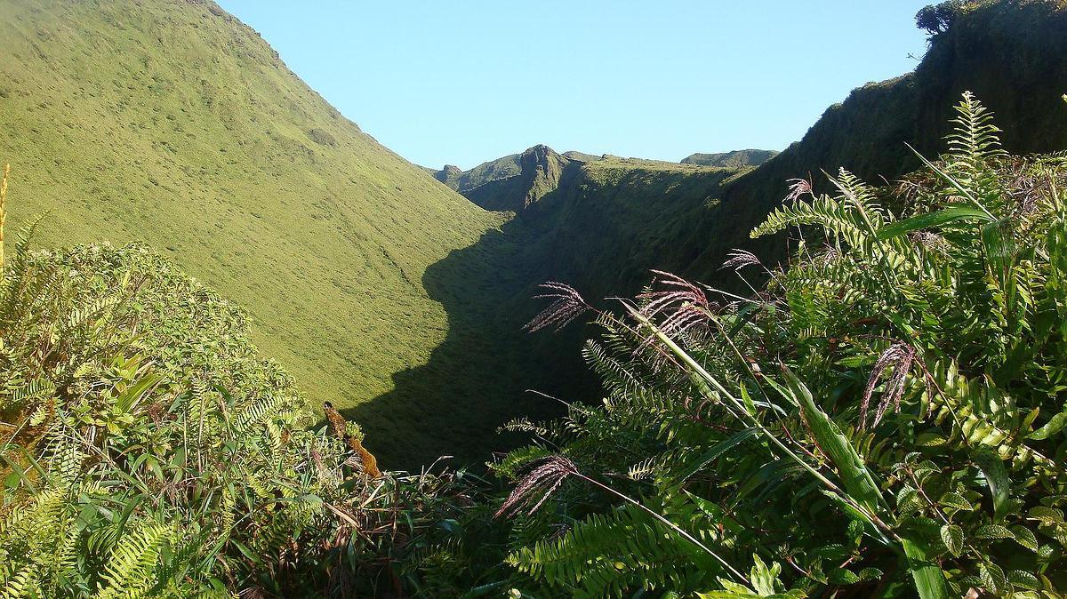 Paysage de la montagne Pelée