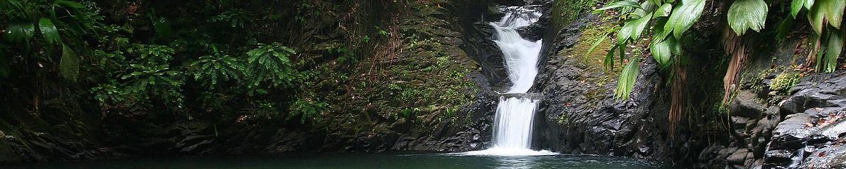 Cascade sur la commune de Petit-Bourg
