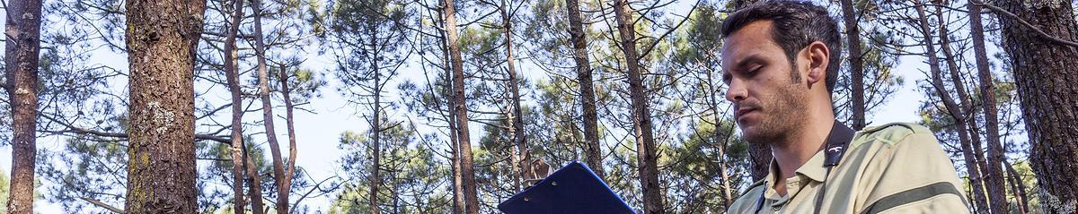 Forestiers de l'ONF en inventaire avifaune