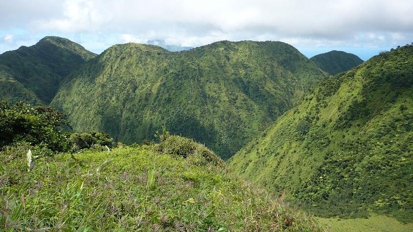 Réserve biologique des Pitons du Carbet, Martinique