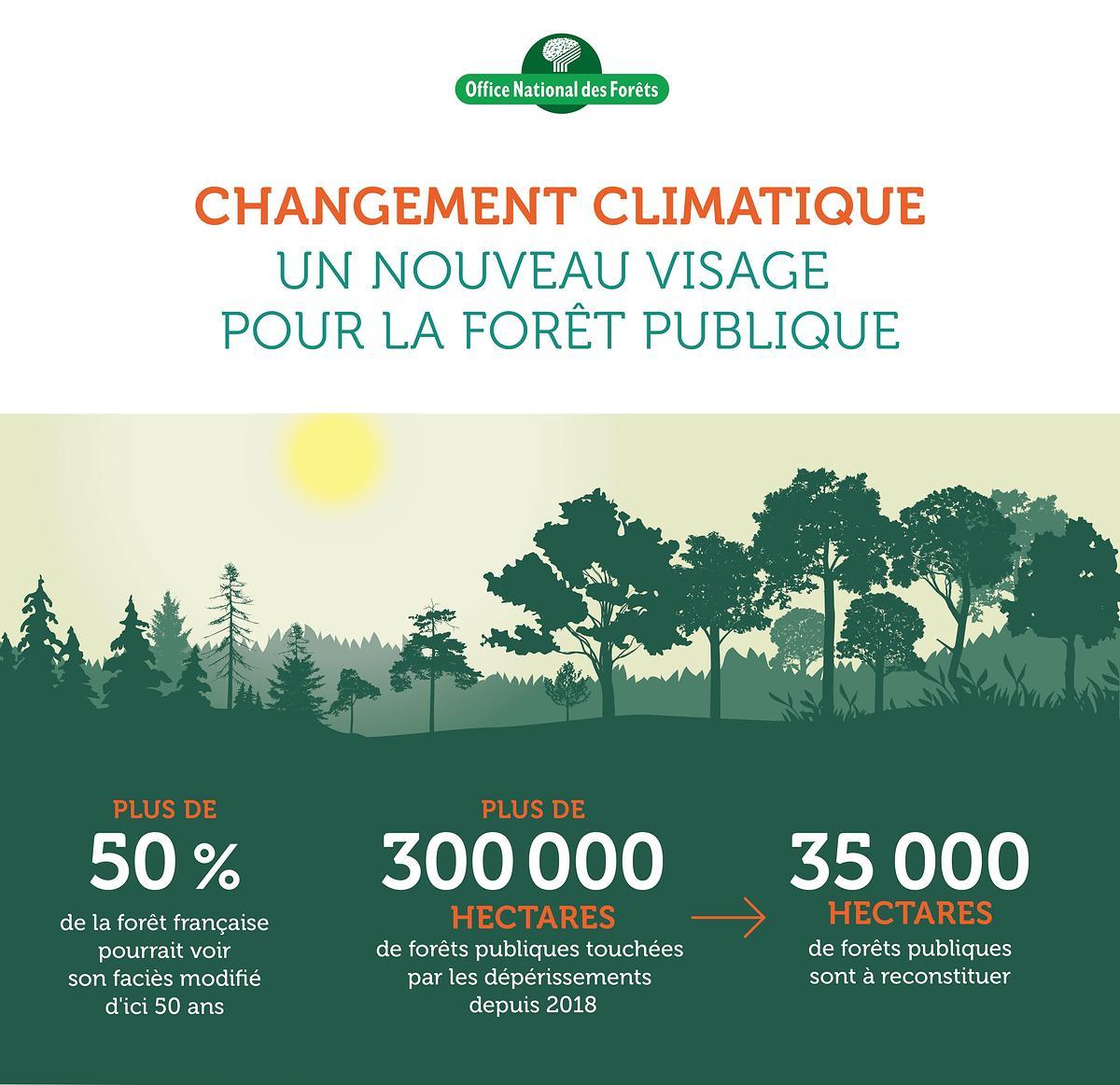 Lutte contre le réchauffement climatique et biodiversité en tête des priorités de l'ONF
