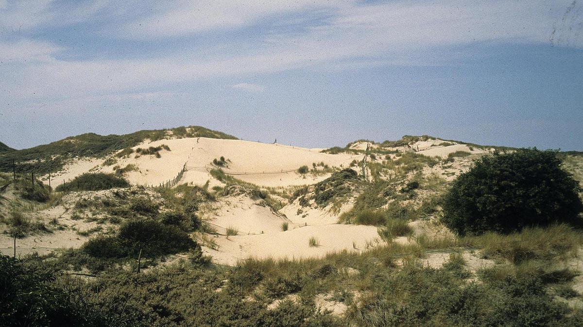 Réserve biologique de la Côte d'Opale (Pas-de-Calais)